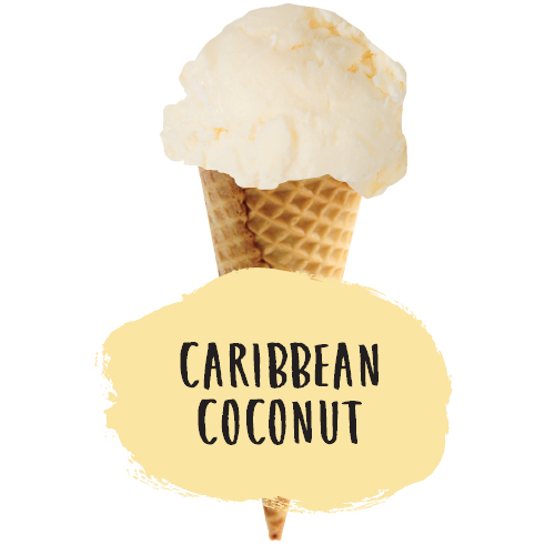 Marshfield 4lt Caribbean Coconut