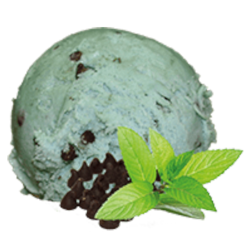 4.75lt New Forest Dairy Mint Chocolate Ripple