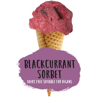 2.4lt Marshfield Blackcurrant Sorbet